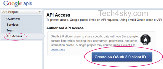 Google APIs access